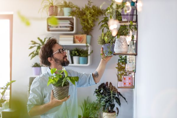 Man with house plants