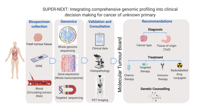 SUPER-NEXT study_solving unknown primary cancer